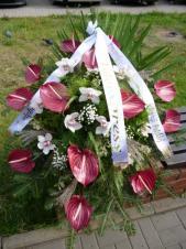 Wiązanka pogrzebowa z kwiatów żywych, wielkość: duża, anthurium bordowe (Safari), storczyk biały (Cymbidium), podkład jodłowy, zieleń dekoracyjna, szarfa jedwabna szer. 7 cm druk cyfrowy (+20 zł).