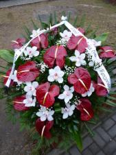 Wiązanka pogrzebowa z kwiatów żywych, anthurium bordowe (Tropical Night), storczyk biały (Cymbidium), zieleń dekoracyjna, liść palmy, podkład jodłowy, szarfa satynowa 7 cm. szer. (+ 20 zł)