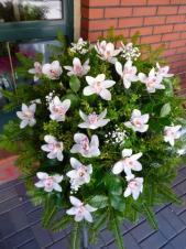 Wiązanka pogrzebowa z kwiatów żywych, wielkość: bardzo duża, storczyki białe (Cymbidium), zieleń dekoracyjna, podkład jodłowy.