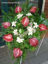 Wiązanka pogrzebowa z kwiatów żywych, anthurium bordowe (Safari), storczyk biały (Cymbidium), zieleń dekoracyjna, podkład  jodłowy.