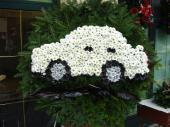 Wieniec pogrzebowy z żywych kwiatów, kształt okrągły, chryzantemy białe, liście kordyliny, podkład jodłowy, zieleń dekoracyjna.