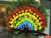 Wieniec pogrzebowy z żywych kwiatów, w kształcie tęczy, liście kordyliny, podkład jodłowy, zieleń dekoracyjna.