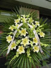 Wieniec pogrzebowy z żywych kwiatów, kształt owalny, lilie kremowe (Conca D'or), anthurium zielone, mieczyk zielony, liście palmy, liście Salal, podkład jodłowy, zieleń dekoracyjna, szarfa satynowa 7cm, druk komputerowy (+20 zł).
