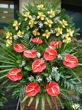 Wieniec z żywych kwiatów, wielkość: średni, storczyki złote (Cymbidium), anthurium czerwone (Tropical), liść palmy, podkład jodłowy, zieleń dekoracyjna.