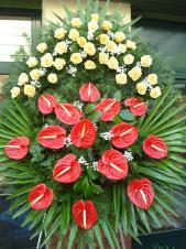 Wieniec z żywych kwiatów, wielkość: bardzo duży, róże kremowe (Savita), anthurium czerwone, liść palmy, podkład jodłowy, zieleń dekoracyjna.