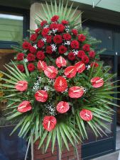 Wieniec pogrzebowy z żywych kwiatów, wielkość: duży, róże pąsowe, anthurium czerwone, liść palmy, podkład jodłowy, zieleń dekoracyjna.