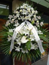 Wieniec pogrzebowy z kwiatów żywych, wielkość: bardzo duży, lilie białe (Casablanca), storczyki białe, róże białe, anthurium białe (Presence), liść palmy, kordylina zielona, podkład jodłowy, zieleń dekoracyjna.