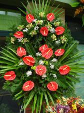 Wieniec z żywych kwiatów, wielkość: średni, storczyki zielone (Cymbidium), anthurium czerwone, liście palmy, podkład jodłowy, zieleń dekoracyjna.