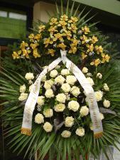 Wieniec pogrzebowy z żywych kwiatów, wielkość: bardzo duży, róże kremowe (Avalanche), storczyki złote (Cymbidium), liść palmy, podkład jodłowy, zieleń dekoracyjna.
