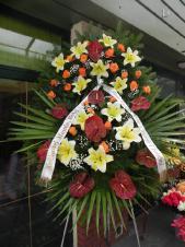 Wieniec pogrzebowy z żywych kwiatów, wielkość: duży, anthurium brązowe (Choco), lilie kremowe (Conca D'or), róże herbaciane, liść palmy, podkład jodłowy, zieleń dekoracyjna, szarfa satynowa 7cm, druk komputerowy.