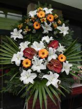 Wieniec pogrzebowy z żywych kwiatów, wielkość: duży, anthurium brązowe (Choco), lilie białe (Casablanca), gerbery herbaciane, storczyki złoto-żółte, liść palmy, podkład jodłowy, zieleń dekoracyjna.