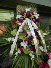 Wieniec pogrzebowy z żywych kwiatów, wielkość: bardzo duży, anthurium zielone (Midori), róże pasowe, lilie białe (Casablanca), mieczyki białe, storczyki żółte, eustoma fioletowa, liście palmy, podkład jodłowy, zieleń dekoracyjna, szarfa satynowa 7cm podwójna, druk komputerowy (+30zł).
