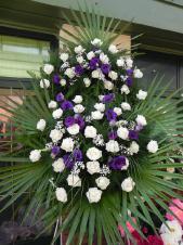 Wieniec pogrzebowy z żywych kwiatów, wielkość: duży, róże białe (Akito), eustoma fioletowa, liść palmy, podkład jodłowy, zieleń dekoracyjna.
