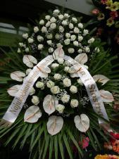 Wieniec pogrzebowy z żywych kwiatów, wielkość: bardzo duży, róże kremowe (Avalanche), anthurium białe (Carnaval), liść palmy, podkład jodłowy, zieleń dekoracyjna, szarfa satynowa 10cm, druk komputerowy(+30zł).