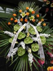 Wieniec pogrzebowy z żywych kwiatów, wielkość: duży, anthurium zielone (Midori), mieczyk biały, cantadeskia żółta, róże herbaciane (Finess), lilie kremowe (Conca D'or), liść palmy, podkład jodłowy, zieleń dekoracyjna, szarfa satynowa 7cm, druk komputerowy (+20zł).