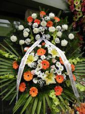Wieniec pogrzebowy z żywych kwiatów, wielkość: duży, gerbery pomarańczowe, róże kremowe (Avalanche), lilie kremowe (Conca D'or), chryzantema biała (Bacardi), mieczyk zielony, cantadeskia biała, róże kremowe (Kiwi), liść palmy, podkład jodłowy, zieleń dekoracyjna, szarfa satynowa 7cm, druk komputerowy (+20zł).