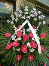 Wieniec z żywych kwiatów, wielkość: duży, storczyki białe (Cymbidium), anthurium czerwone, storczyk biały (Dendrobium), liść palmy, podkład jodłowy, szarfa satynowa, druk komputerowy (+20zł).