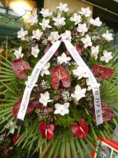 Wieniec z żywych kwiatów, wielkość: duży, storczyki białe (Cymbidium), anthurium bordowe, liść palmy, podkład jodłowy, szarfa satynowa bez frędzli, druk komputerowy (+20zł).