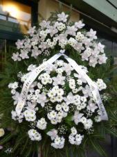 Wieniec z żywych kwiatów, wielkość:  bardzo duży, storczyki białe (Cymbidium), chryzantemy białe, podkład jodłowy, szarfa satynowa bez frędzli, druk komputerowy (+20zł).