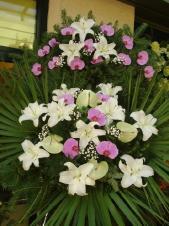Wieniec z żywych kwiatów, lilia biała, storczyk różowy (Phalaenopsis), anthurium jasnozielone, podkład jodłowy, zieleń dekoracyjna, liść plamy.