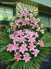 Wieniec pogrzebowy z żywych kwiatów, wielkość: bardzo duży, storczyki pistacjowe (Cymbidium), lilie różowe (Sorbona), liście palmy, podkład jodłowy, zieleń dekoracyjna.