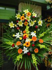 Wieniec pogrzebowy z żywych kwiatów, wielkość: średni, gerbera pomarańczowa, lilie białe, róże pąsowe i żółte, mieczyk zielony, liść palmy, podkład jodłowy, zieleń dekoracyjna.